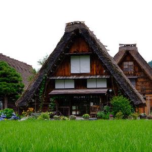 Opiniones de viaje a Japón en familia: Monica nos cuenta su experiencia