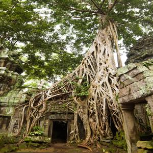 Mini guía: Lo que tienes que saber antes de viajar a Camboya