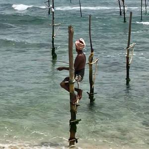 Opinión de Viaje a Sri Lanka de Malena y Víctor