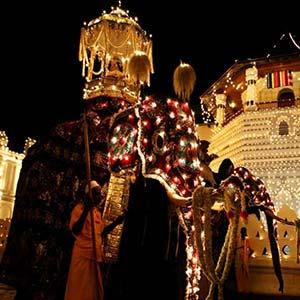 Festival Esala Perahera en Kandy, Sri Lanka